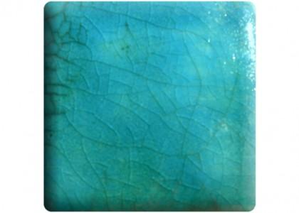 Turquoise 113CC