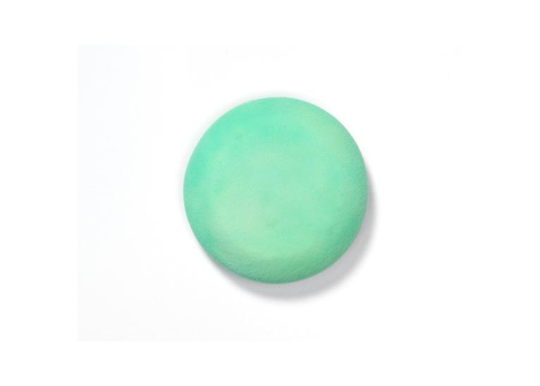 F/Shing Sponge-Green