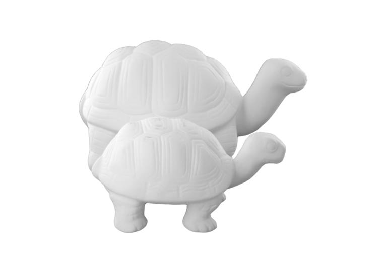 'Big' Tango The Turt