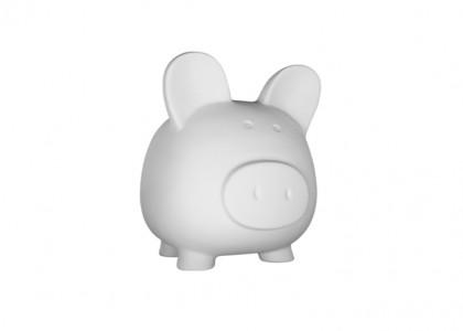 Biggy Piggy Bank