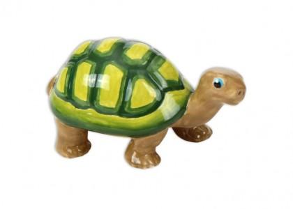 Tango The Turtle