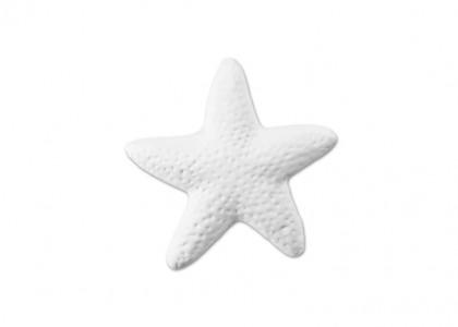 Starfish Tag - Pk 12