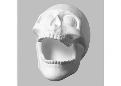Skull Big Mouth:6c/s:4.25x3.5