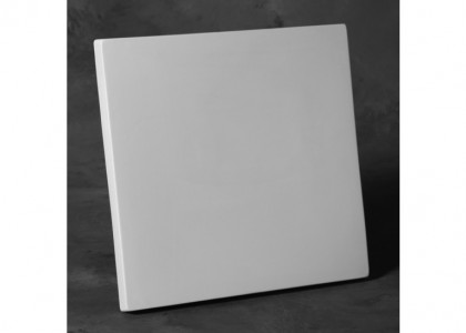 Canvas Squ 12 X 12