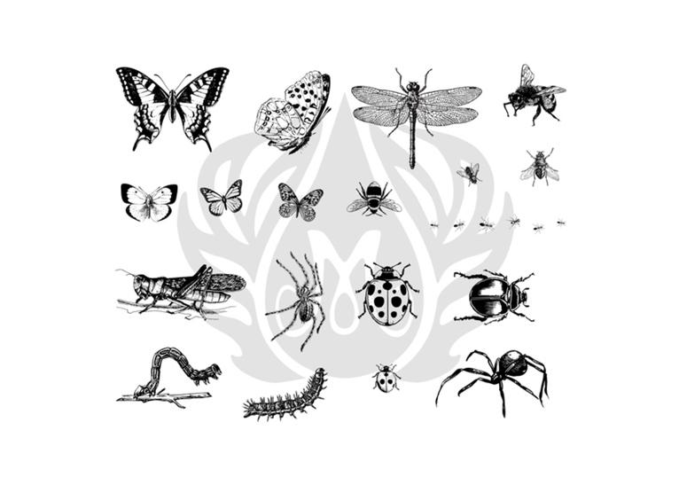 Bugs Silk Screen