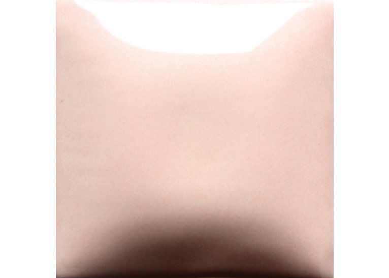 Light Pink 473ML