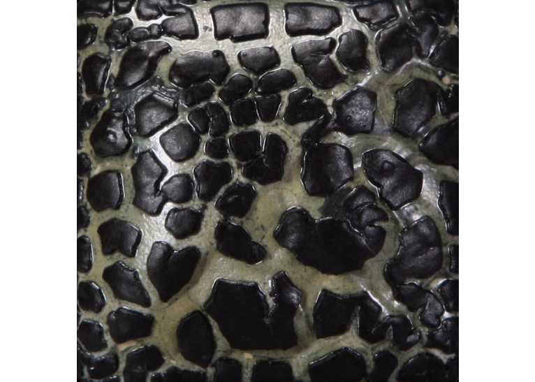 Black Mudcrack (Pint